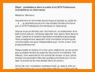 Lettre De Motivation Bts Profession Immobiliere 15 Lettre De Motivation Bts Sio Alternance