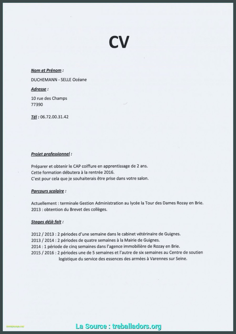 Lettre De Motivation College Parfait Exemple Lettre De Motivation Gestion De La Pme Exemple