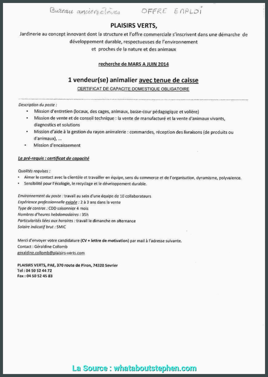 Lettre De Motivation Commerce Local Lettre De Motivation Merce 15 Lettre De Motivation Pro