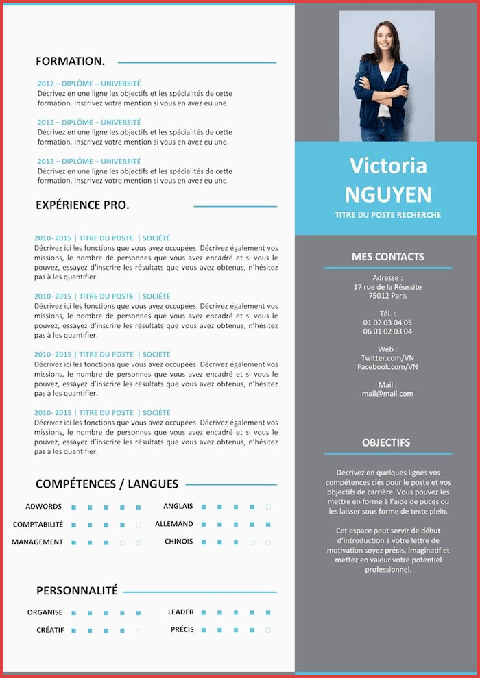 Lettre De Motivation Immersion Professionnelle Cv Professionnelle Luxe Cv Exemple 2016 Modele Cv
