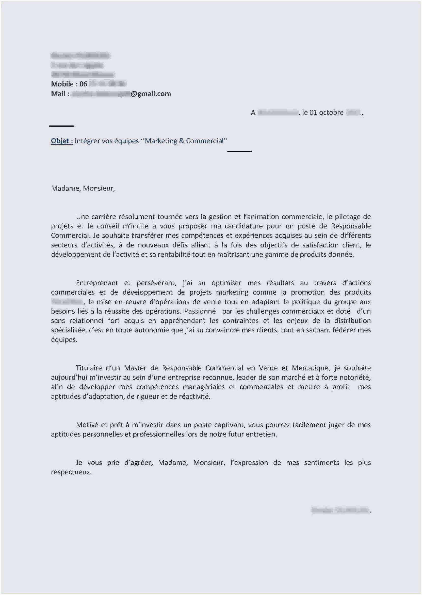 Lettre De Motivation Immersion Professionnelle Exemple De Anecdote In Romana