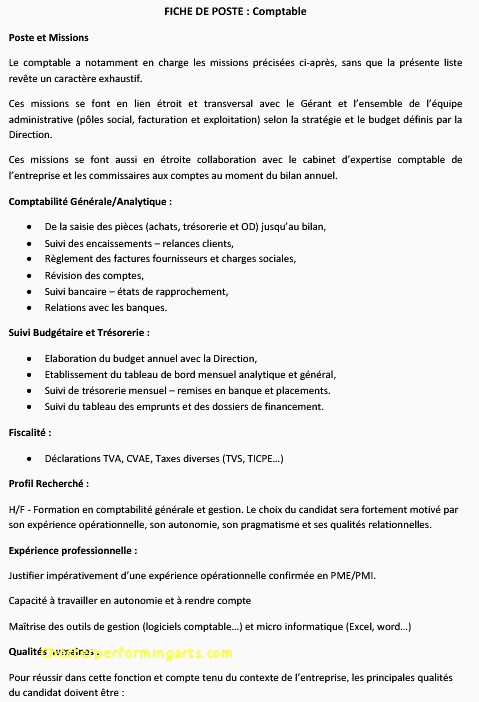 Lettre De Motivation Pour Un Service Civique Cv Pour Service Civique Simple 45 Mod¨le Lettre De Motivation