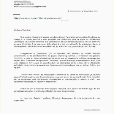 Lettre De Motivation Street Marketing original Exemple Lettre De Motivation Master Moss Lettre De