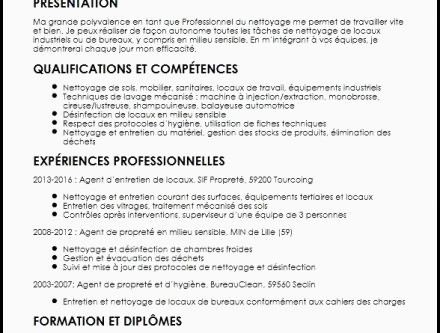Lettre De Motivation Technicien Informatique Aepp